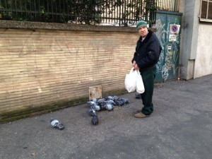 Italian man feeding the pigeons. He said something to me in Italian after I took the picture but I didn't understand. Probably best.