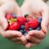 Berries for Better Retention