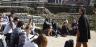 Study English Literature in Rome