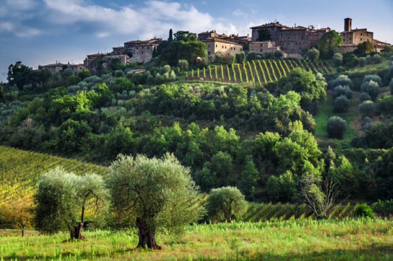 Montalcino in Tuscany