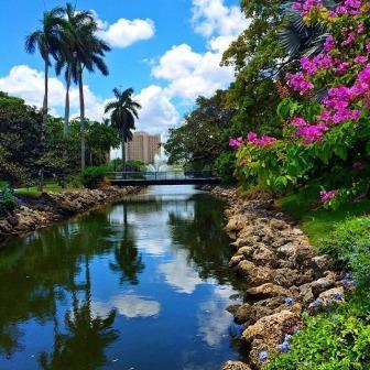 Campus View_Miami
