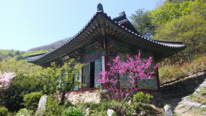 Typical mountain Buddhist temple – one could find several while hiking.