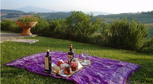 picnic-tuscany, Great Countries to Visit on Spring Break, traveling in Europe in the spring, study abroad students,