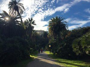 ara pacis, rome, Hidden Gems of Rome, jcu classic studies major, discovering rome, study abroad in rome, orto botanico