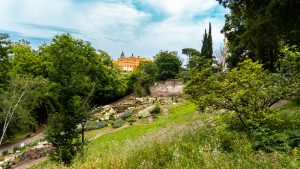 Orto Botanico, Botanical gardens of Rome, Trastevere, study abroad, What to see in Rome
